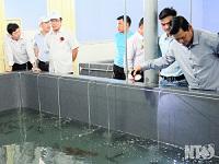 Tỉnh Ninh Thuận tiếp tục phát triển mạnh nghành nuôi trồng thủy sản