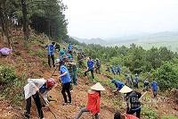 Phòng chống cháy rừng trong mùa khô ở Thuận Bắc