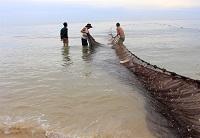 Đánh bắt hải sản xa bờ cho hiệu quả cao với nghề lưới rê