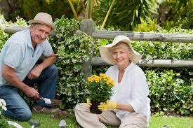 Lý do khiến những người làm vườn hạnh phúc hơn nhiều nghề khác?