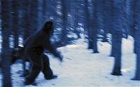Những bí ẩn về người tuyết khổng lổ Yeti vừa được phát hiện
